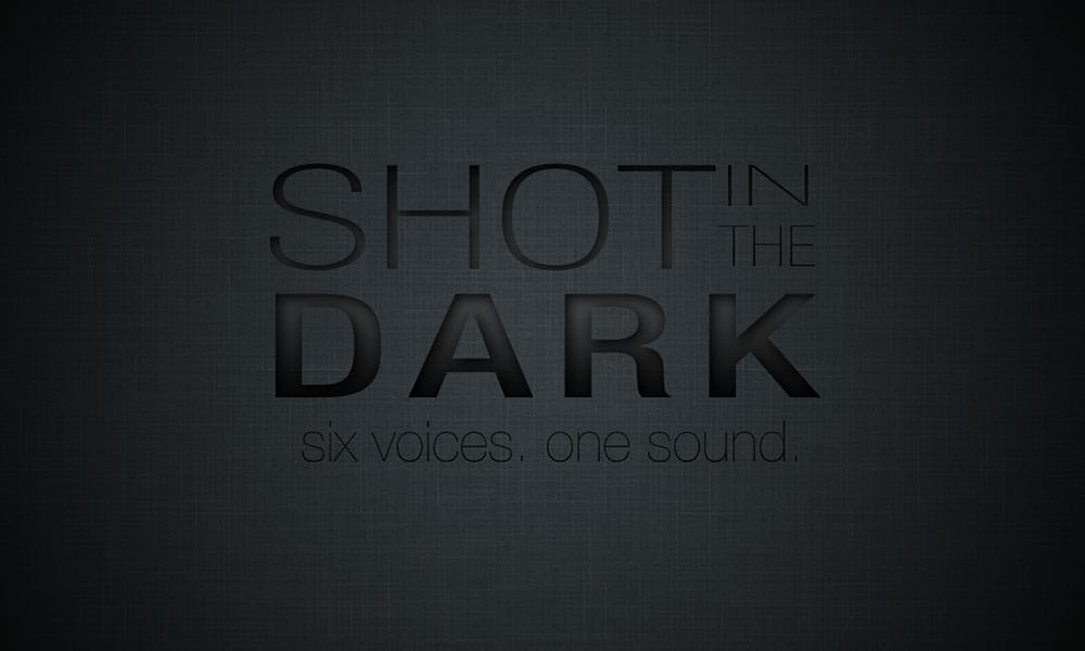 Shot in the Dark Logo. Business Card.