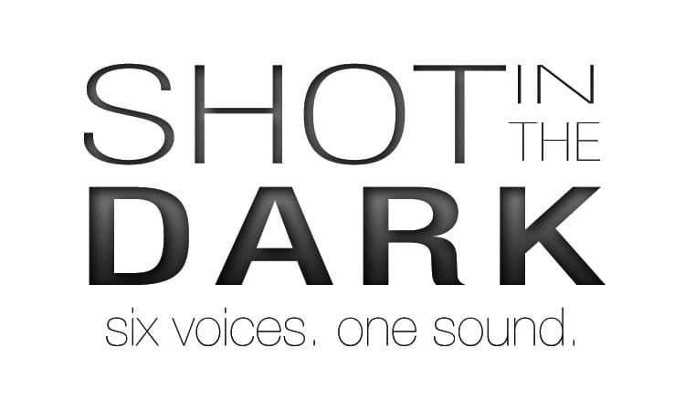 Shot in the Dark Logo. Text Only.